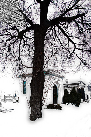 Historic Calvary & Greenwood Cemeteries: A ghostly stillness