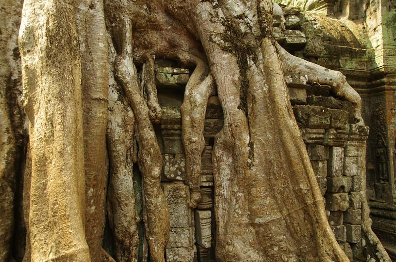 Lara Crofts Angkor Thom