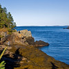 Head Harbour. Image taken from the road leading to the East Quoddy Lighthouse.