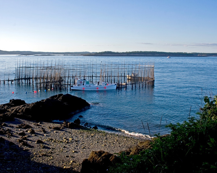 A herring weir, maintained by traditional fisherman in the Bay of Fundy.... Thanks Trina.