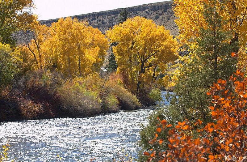 Gunnison river next to Almont