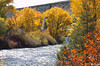 Gunnison river next to Almont