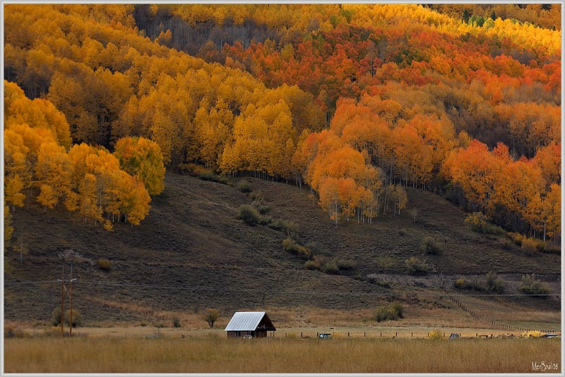 The cabin (Crested-Butte)