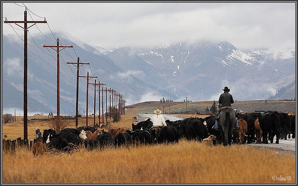 Highway traffic (Crested-Butte)