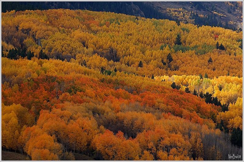 Crested -Butte (Colorado)