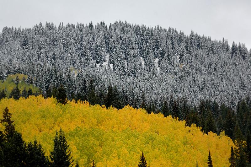 Winter  in fall