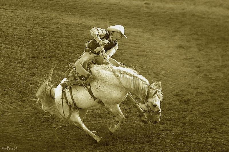 rodeos1