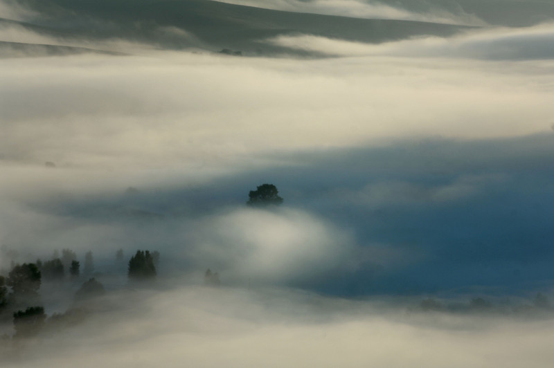 Cloudy Gunni