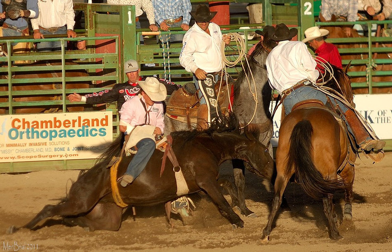 14 july 2011 rodeo 4 179