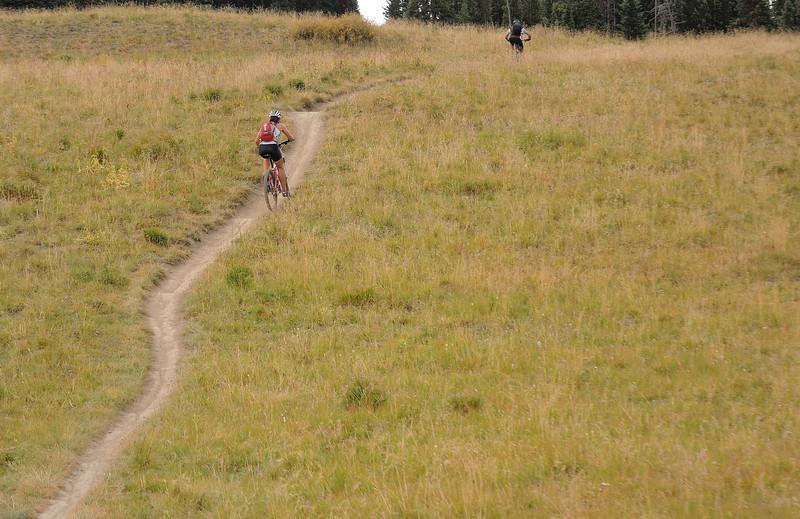401 single trail