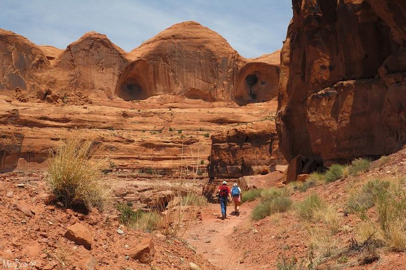 canyonpotache16