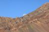 Purple mountain ridge from Yule pass trail