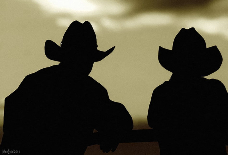 Steeve & son (Gunnison )
