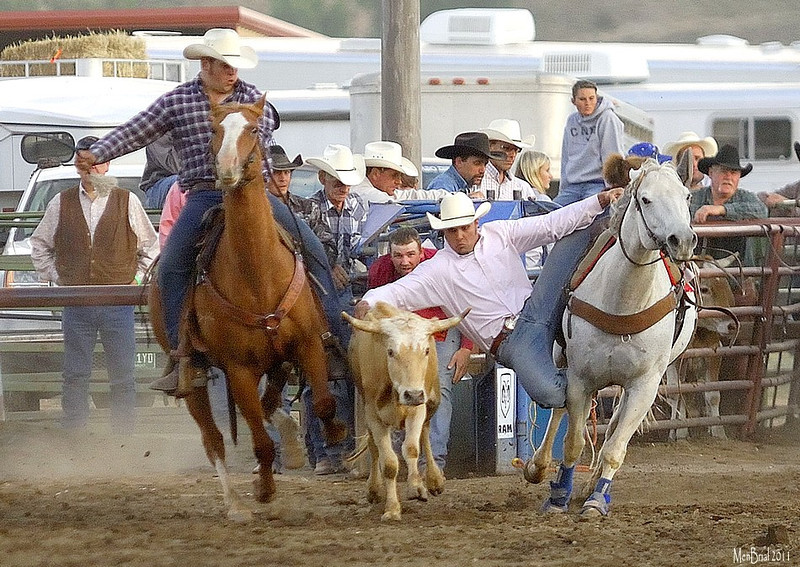 16 july 2011 rodeo 3 1 34