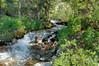 Creek to cross