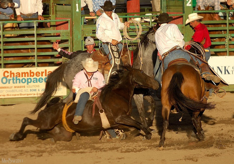 14 july 2011 rodeo 3 178