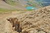 Grenn Lake from Ruby slopes