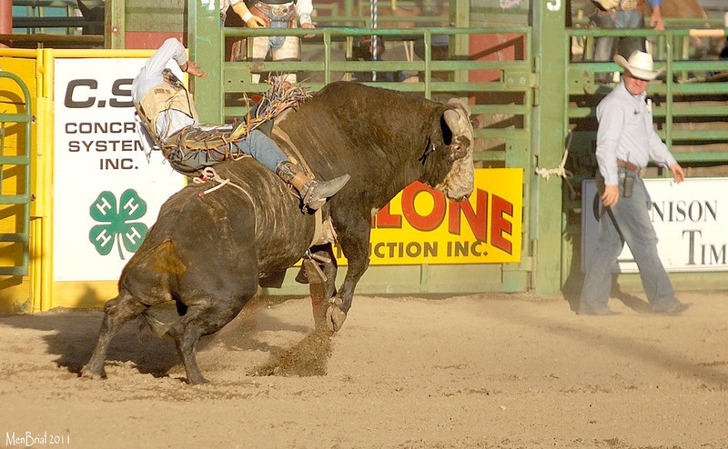 15 july 2011 rodeo 2 6 14