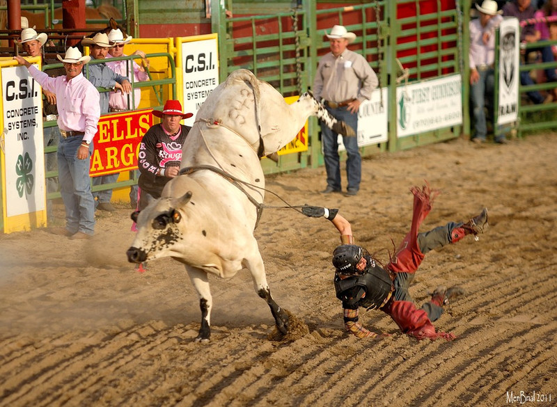 14 july 2011 rodeo 1 13 49