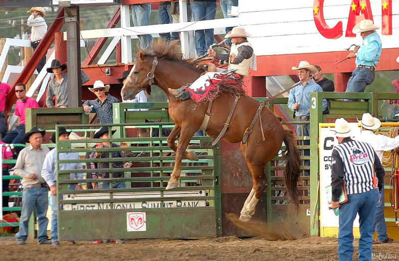 15 july 2011 rodeo 2 11 77
