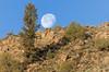 Gunnison Moon