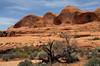 canyonpotache19