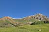 Mt Belleview from Rustler Gulch trail