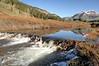 Beaver dam , Barrage de castors