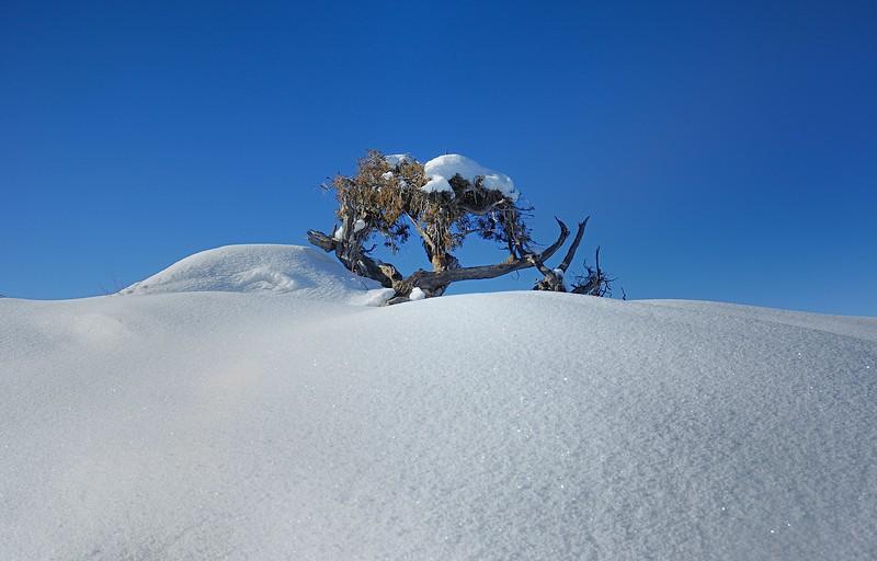 White Sand Dunes ?