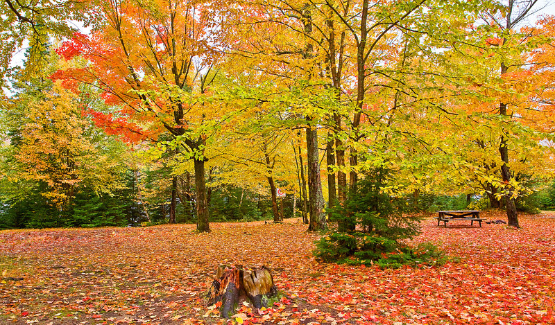 Canada, Quebec, Mont-Tremblant National Park, Fall Colors, Foliage, 加拿大,魁北克,秋色, 塔伯拉山公园