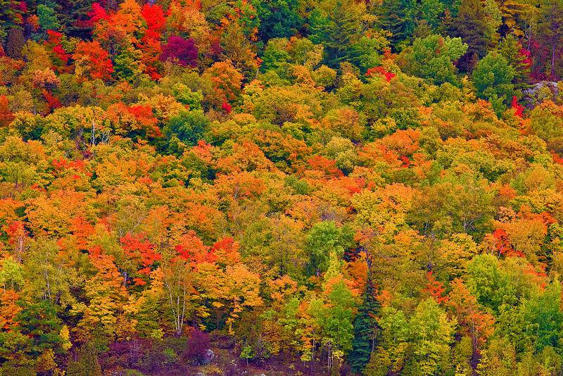 Canada, Quebec, La Mauricie National Park, Fall Colors, Foliage, 加拿大,魁北克,秋色,   国家公园
