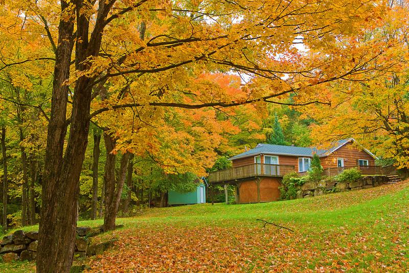 Canada, Quebec, Mont-Tremblant, Laurentian, Fall Colors, Foliage, 加拿大,魁北克,秋色