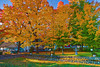 Canada, Quebec, Quebec City, Fall Colors, Landscape, 加拿大 风景, 魁北克, 秋色