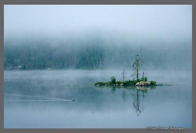 (E094)  Eagle and Loon - Quetico Provincial Park, Ontario