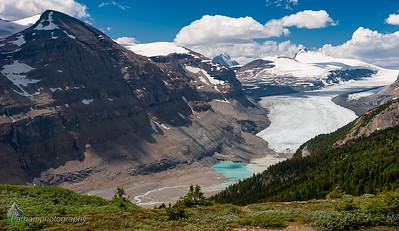 Saskatchewan Glacier  (BA-07108)