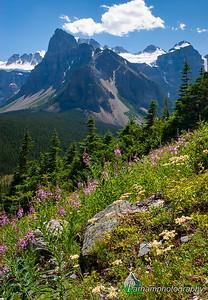 Wenkchemna Peaks   (BA-07018)