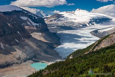 Saskatchewan Glacier  (BA-07103)
