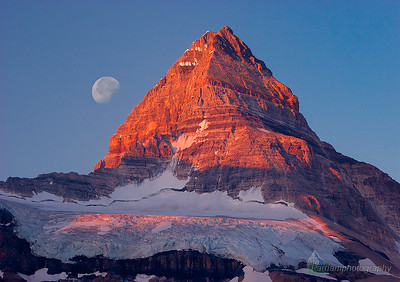 Sunrise Alpenglow on Mount Assiniboine  (BC-07092)