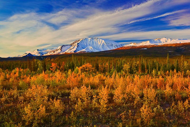 Canada, Yukon, Alaska Highway, Mount Cairnes, Fall Colors,  加拿大, 育空, 阿拉斯加高速公路, 秋色