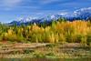 Canada, Yukon, Alaska Highway, Haines Junction, Fall Colors, 加拿大,  育空,  阿拉斯加高速公路, 秋色