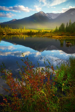 Fall Color In The Rockies - Vermillion Lakes, Banff National Park, AB, Canada