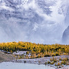 In the Valley of Larches