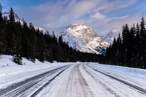 The Icefields Parkway near Mosquito Creek.