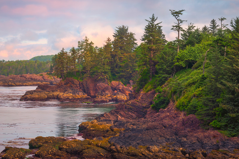 The Rugged Coastline Of The Pacific Rim Pacific Rim National Park, Ucluelet, Vancouver Island, BC, Canada