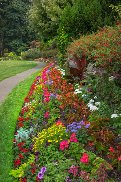 Flowing Patterns Of Colorful Flowers On Beacon Hill - Beacon Hill Park, Victoria, Vancouver Island, BC