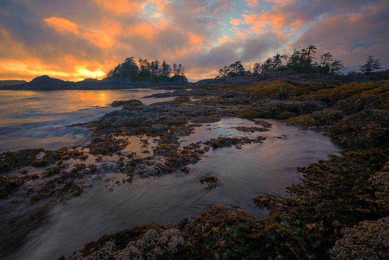 As The Sun Sets Down On Frank Island Chesterman Beach, Tofino,  Vancouver Island, BC, Canada