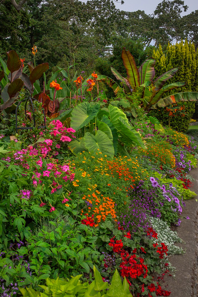 Makeup Of All Colors In The Garden - Beacon Hill Park, Victoria, Vancouver Island, BC
