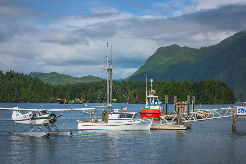 Hub Of Action In Clayoquot Sound Clayoquot Sound ,Tofino, and Ucluelet By Air,  Vancouver Island, BC, Canada