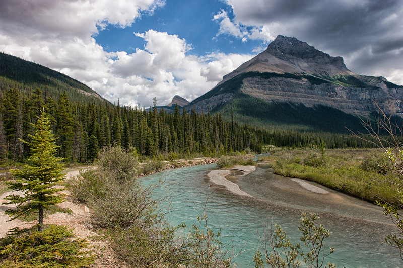 Blue Skies on the Icefields Parkway