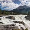 Roaring Athabasca Falls